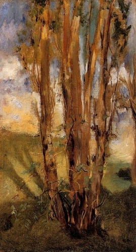 Etude d'arbres 1859 MANET