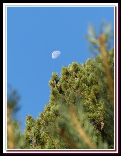 Lune et moi