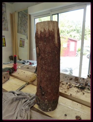 Un tronc de cèdre...