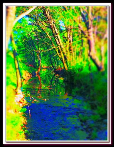 Rivière flashy  à saint Georges d'Orques