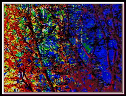 Expressionnisme et arbres 1